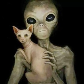 alien_kitty